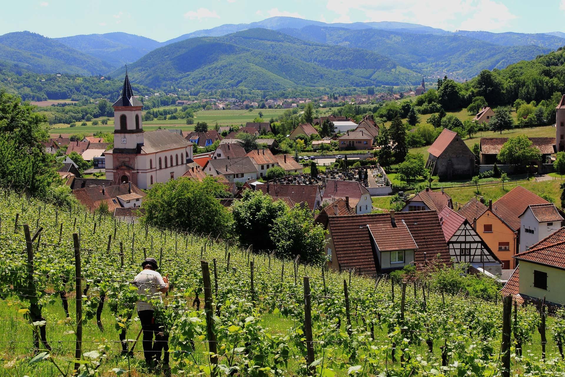 Vente de produits régionaux Alsace, place de marché, artisans et producteurs alsaciens